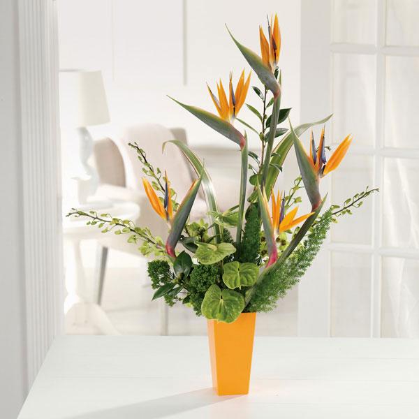 Gợi ý hoa đẹp tặng sinh nhật chồng